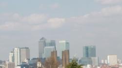 Nika at Greenwich
